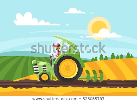 Vector flat style illustration of farmer working in farmed land stock photo © curiosity