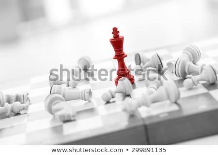 potente · scacchi · gioco · nero · legno · re - foto d'archivio © fisher