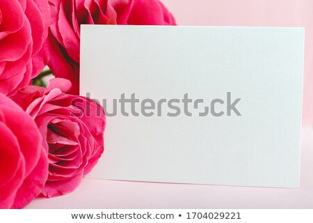 Womens Day lettering text for greeting card. Red rose on white background stock photo © orensila