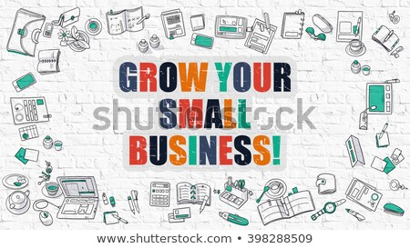 grow your small business in multicolor doodle design stock photo © tashatuvango