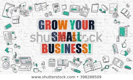 Grow Your Small Business in Multicolor. Doodle Design. Stock photo © tashatuvango