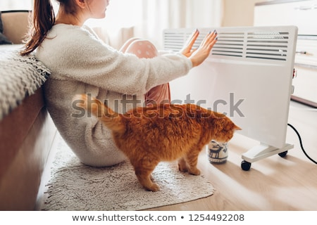 A cup of warmth in the cold season. Stock photo © lithian