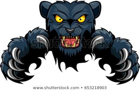 черный Panther талисман прорыв сердиться животного Сток-фото © Krisdog