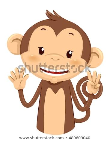 талисман обезьяны восемь иллюстрация Cute пальцы Сток-фото © lenm