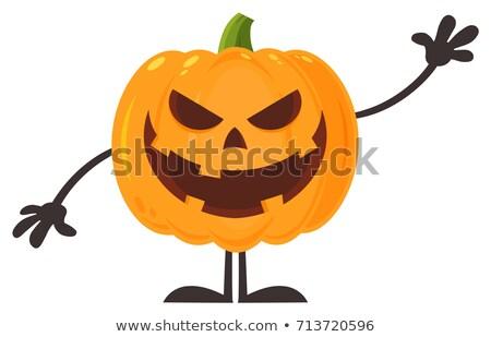 Gülen kötü cadılar bayramı kabak karikatür karakter Stok fotoğraf © hittoon