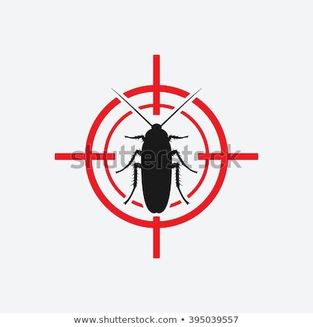 Durdurmak hamamböceği ikon stil örnek Stok fotoğraf © patrimonio