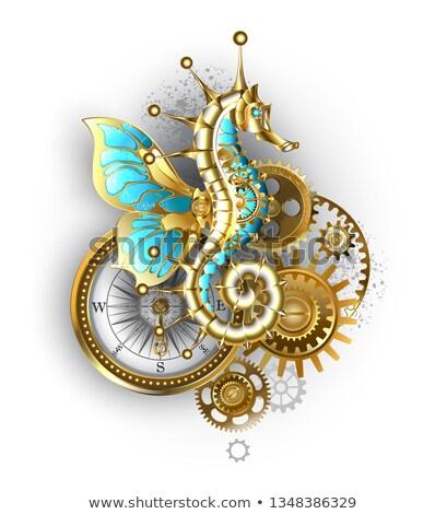 антикварная компас передач золото латунь бирюзовый Сток-фото © blackmoon979