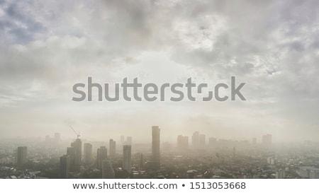 Polluted Skies Stock photo © craig