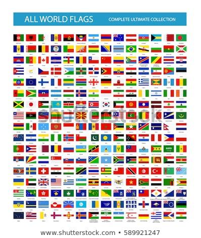 Zászló ikon fehér felirat cél grafikus Stock fotó © smoki
