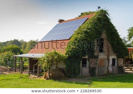 Zonne verzamelaar dak oude huis zonnepanelen Rood Stockfoto © simazoran