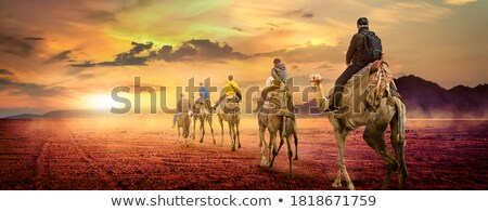 Mountains at surise Egypt Stock photo © Givaga
