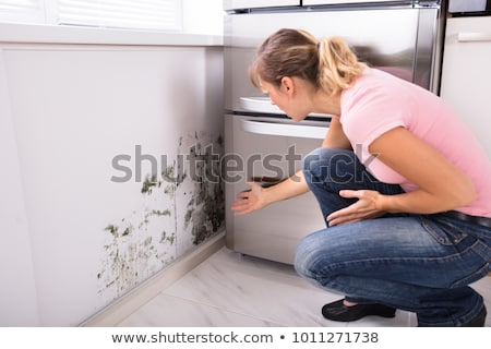 shocked woman looking at mold on wall stock photo © andreypopov