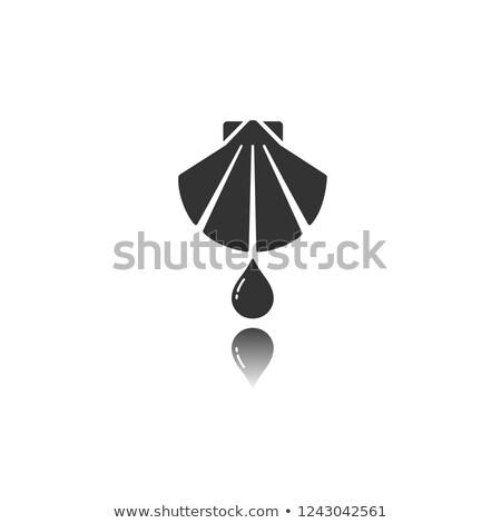 Keresztség izolált ikon tükröződés víz tenger Stock fotó © Imaagio