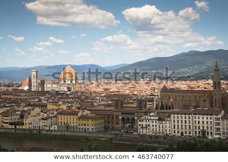 View from roof of Duomo gothic cathedral Stock photo © vapi