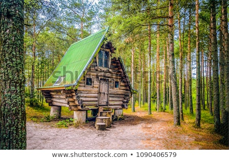 Wood cabin in the deep forest Stock photo © colematt