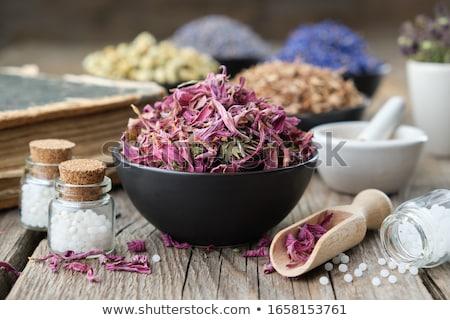 Photo stock: Bouteilles · homéopathiques · pilules · séché · herbes · liste
