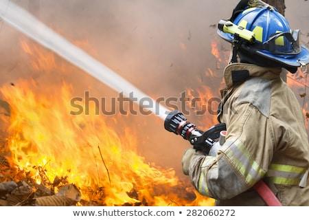 uszkodzony · opony · Fotografia · gumy · samochodu - zdjęcia stock © 5xinc