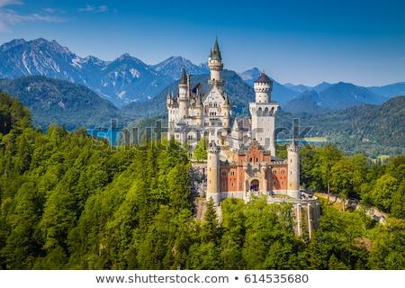 ストックフォト: ノイシュヴァンシュタイン城 · アルプス山脈 · ドイツ · 風景 · 山 · 夏