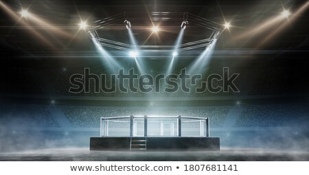 Stock photo: 3d illustration of boxer fighter in action