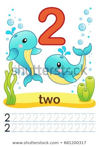 Matematika ír szám kettő illusztráció kéz Stock fotó © colematt