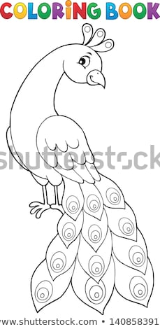 peacock theme image 2 stock photo © clairev