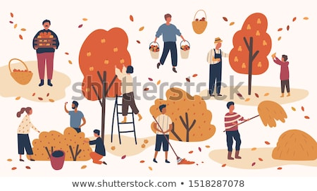 Pear Tree People Picking Fruits in Garden Farmers Stock photo © robuart
