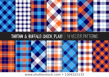Flannel color seamless vector pattern Stock photo © barsrsind