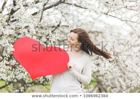 magnifico · donna · rosso · cuore · bianco - foto d'archivio © rob_stark