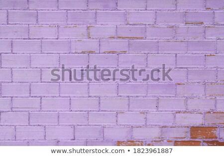 Vintage lilac background brickwall Stock photo © H2O
