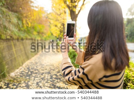 Smart phone with japanese garden view on display Stock photo © simpson33
