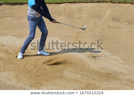 Masculino jogador de golfe jogar tiro campo de golfe homem Foto stock © monkey_business