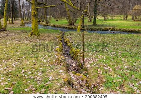 folyam · hdr · kövek · kicsi · természet · szépség - stock fotó © njnightsky