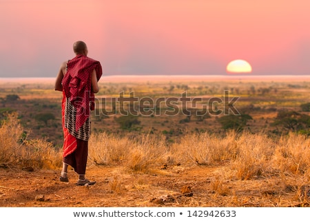 Masai man at sunset Stock photo © adrenalina