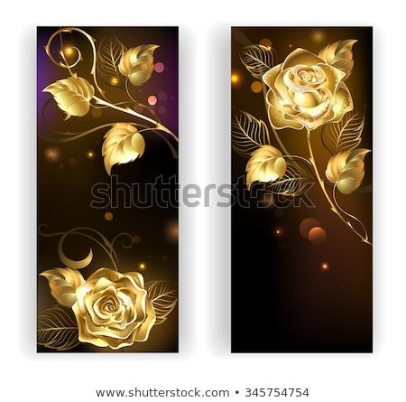Iki kırmızı afiş altın güller afişler Stok fotoğraf © blackmoon979