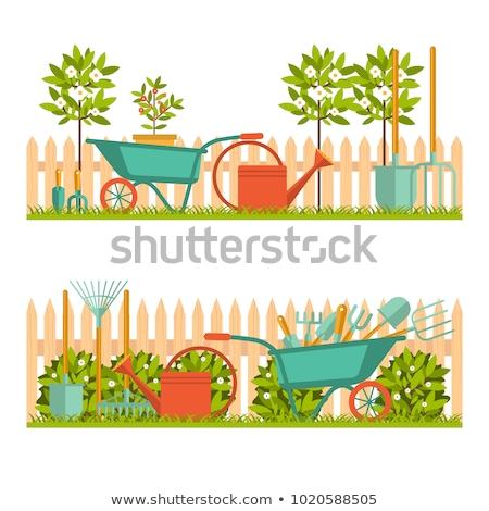 vetor · carrinho · de · mão · jardim · isolado · branco - foto stock © dashadima