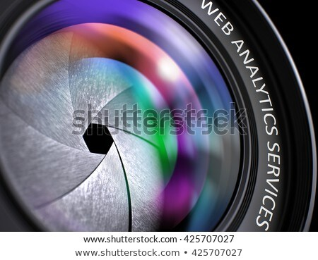 Seo Monitoring on Front of Lens. Closeup. Stock photo © tashatuvango
