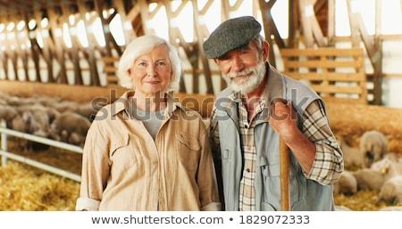 портрет · счастливым · ветеринар · лошади · Постоянный · медицинской - Сток-фото © monkey_business