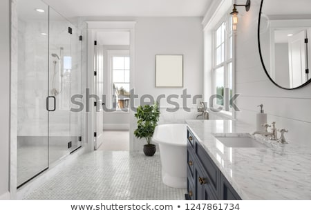 white master bathroom with large walk in shower stock photo © iriana88w