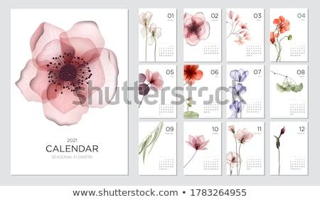 vektor · szett · naptár · terv · ír · rajz - stock fotó © olllikeballoon