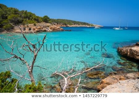 Ibiza Portinatx Arenal Petit beach in Balearics Stock photo © lunamarina