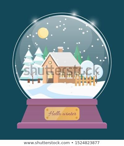 Hello zimą śniegu świecie domu w. Zdjęcia stock © robuart