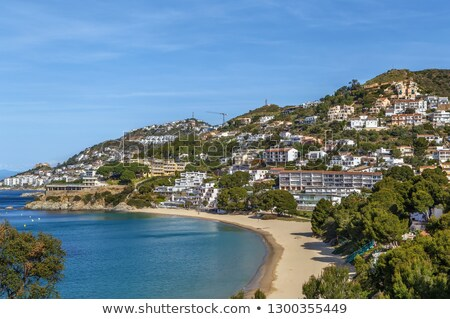 Zee kust rozen Spanje strand boom Stockfoto © borisb17