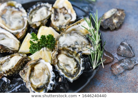 Oysters served on black slate board  Stock photo © grafvision