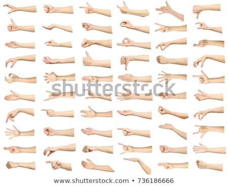 mér · női · kéz · izolált · fehér · nő - stock fotó © Taigi