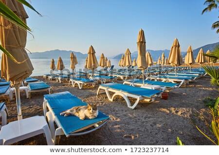 турецкий пляж красивой панорамный мнение Сток-фото © kravcs