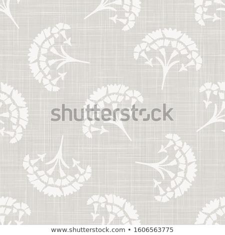 makró · fotó · virágok · közelkép · lila · virág - stock fotó © boroda