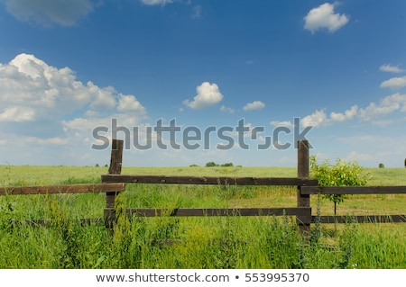 Wood Rail Fence In A Pasture Stock fotó © O_Lypa