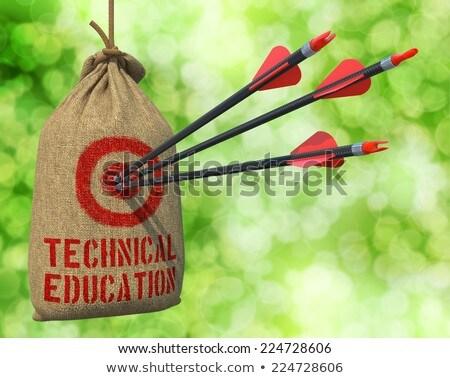 Technical Education  - Arrows Hit in Red Mark Target. Stock photo © tashatuvango