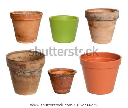 old flower pots stock photo © oleksandro
