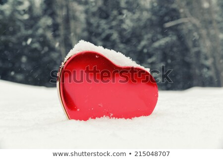 Red Heart Upright in White Snow - Vintage Stock photo © frannyanne